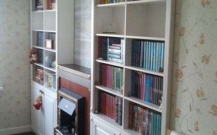 книжный стеллаж с камином
